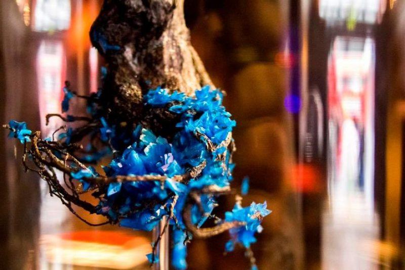 artwork-Encrusting-flowers-with-stabilised-crystals-photo-shoot (2)