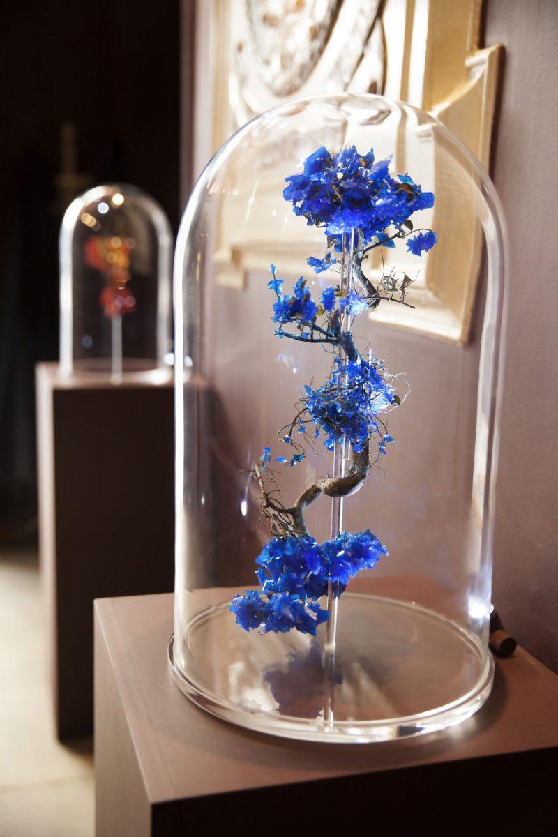 artwork-Encrusting-flowers-with-stabilised-crystals-photo-shoot (8)