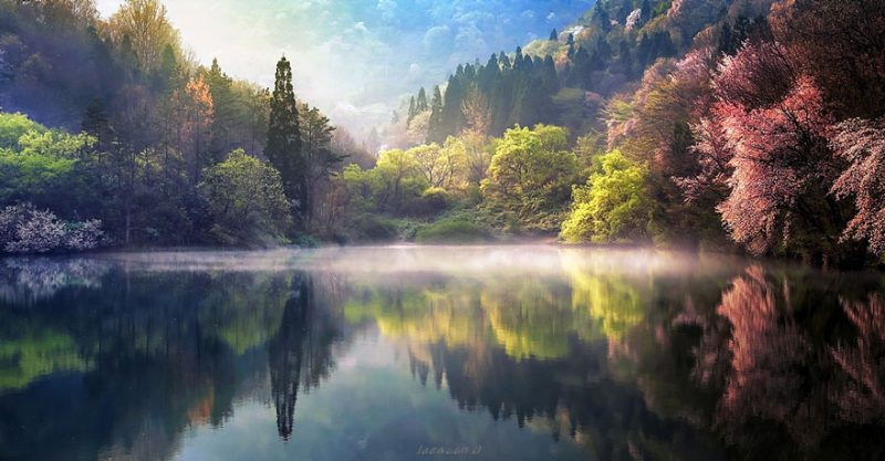 beautiful-photos-reflection-landscape-photography-south-korea (11)
