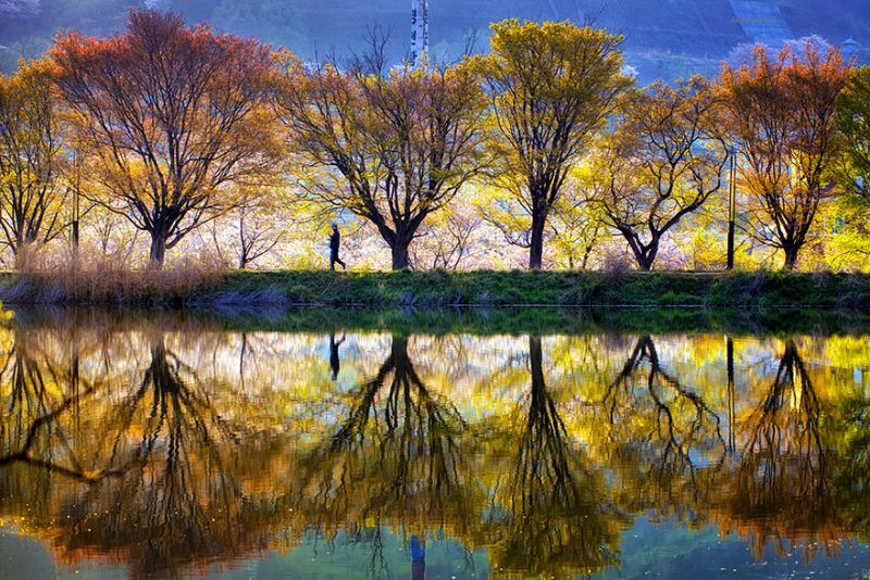 beautiful-photos-reflection-landscape-photography-south-korea (2)