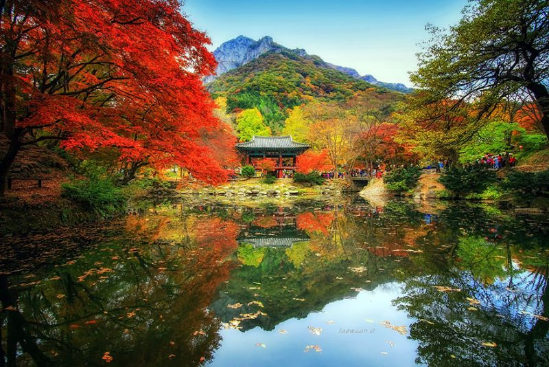 beautiful-photos-reflection-landscape-photography-south-korea (7)