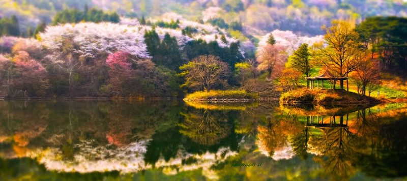 beautiful-photos-reflection-landscape-photography-south-korea (8)