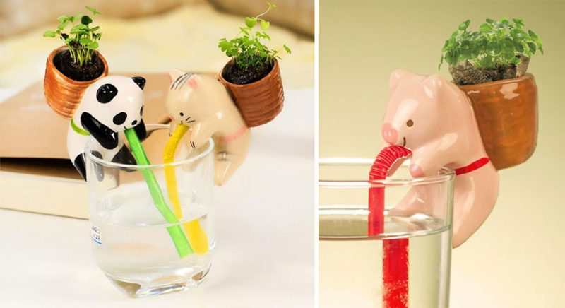 cute-self-watering-ceramic-planters-desktop-5