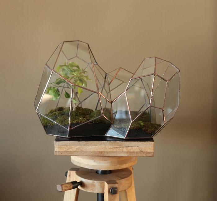 glass-terrarium-sculpture-design-1
