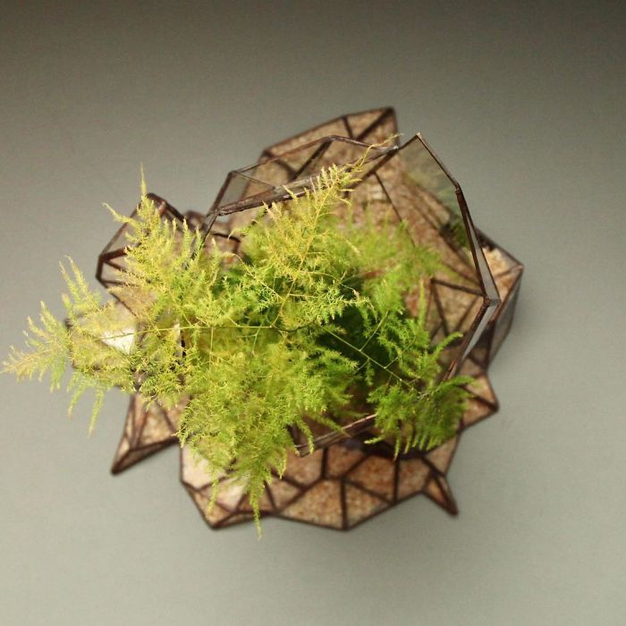 glass-terrarium-sculpture-design-11
