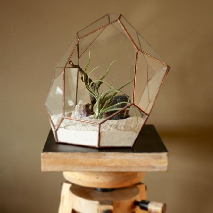 glass-terrarium-sculpture-design-16