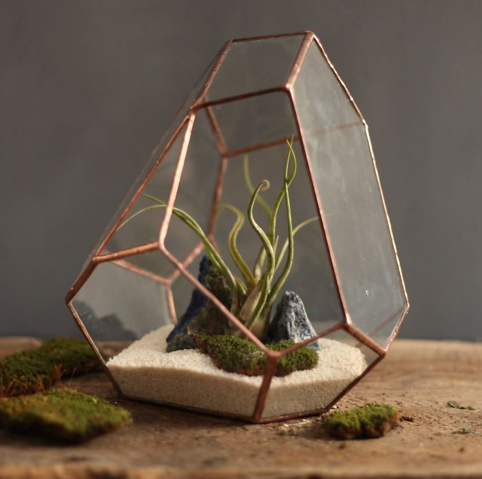 glass-terrarium-sculpture-design-2