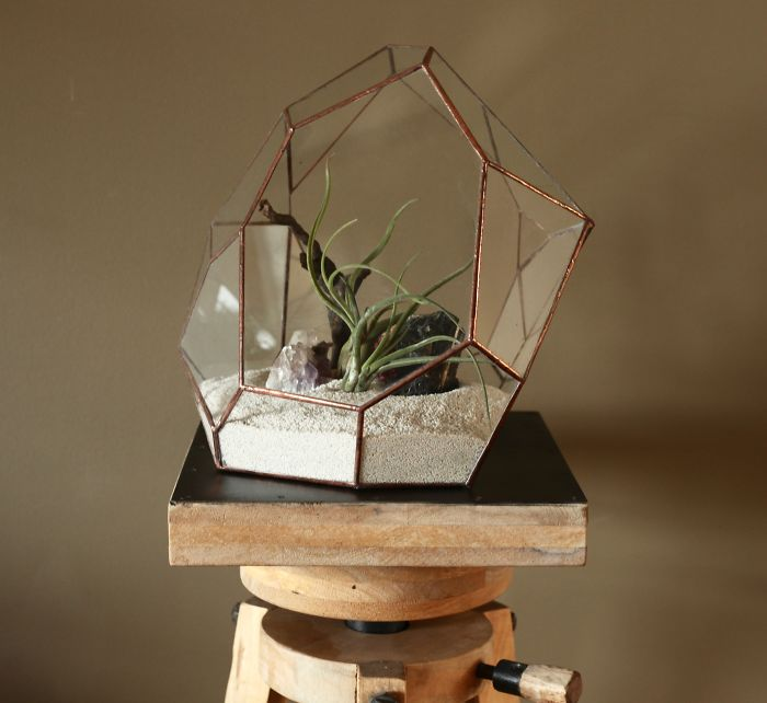 glass-terrarium-sculpture-design-3