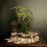 Geometric terrarium by Canadian artist