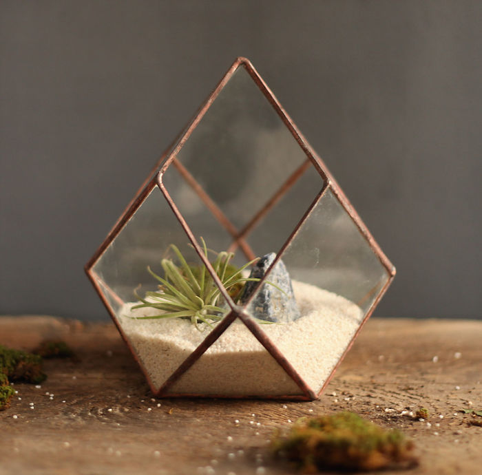glass-terrarium-sculpture-design-9