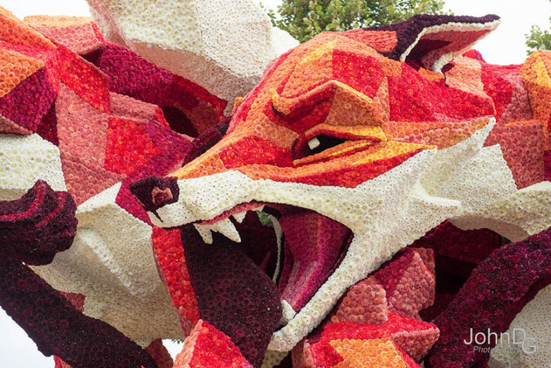 worlds-largest-flower-sculpture-parade-corso-zundert-netherlands-3