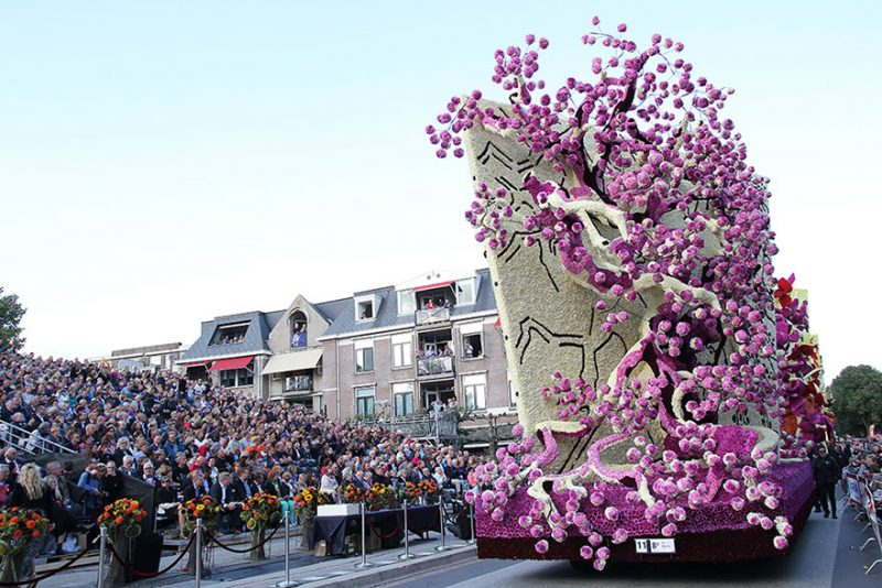 worlds-largest-van-gogh-flower-parade-floats-corso-zundert-netherlands-4