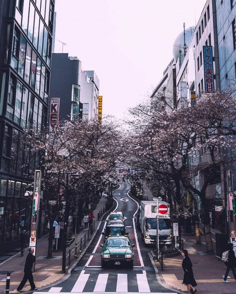 beautiful-impressive-pictures-japan-street-photography-10