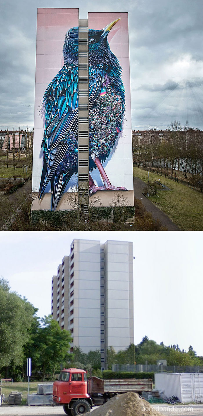 before-and-after-street-art-city-wall-murals-graffiti-5