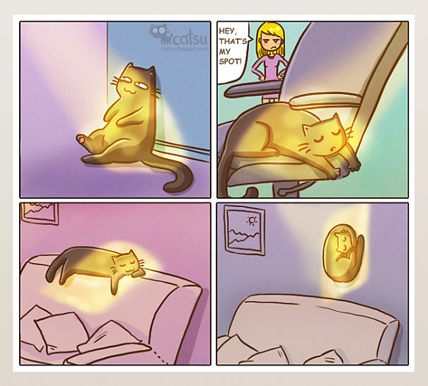 funny-comics-life-with-cats-illustrations-13