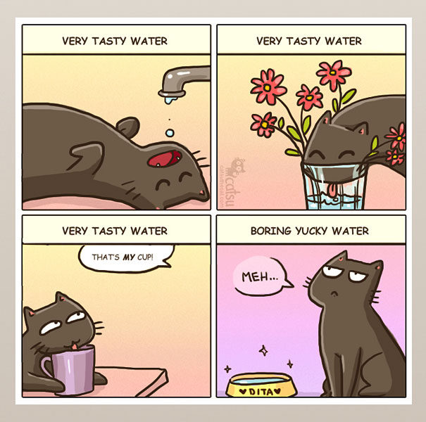 funny-comics-life-with-cats-illustrations-15