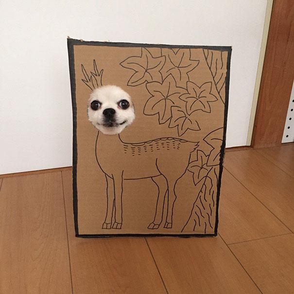 funny-cosplay-dog-costume-cardboard-cutouts-11