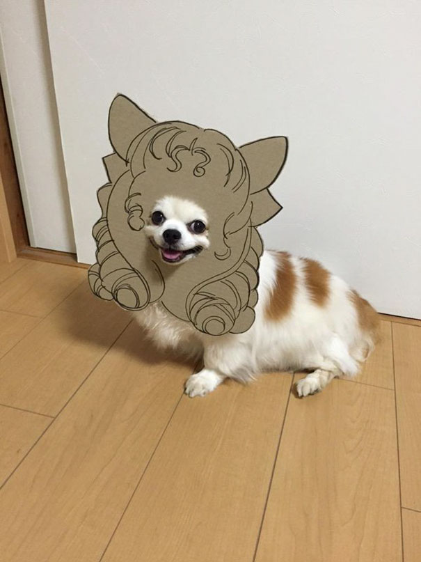 funny-cosplay-dog-costume-cardboard-cutouts-4