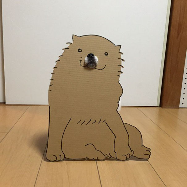 funny-cosplay-dog-costume-cardboard-cutouts-5