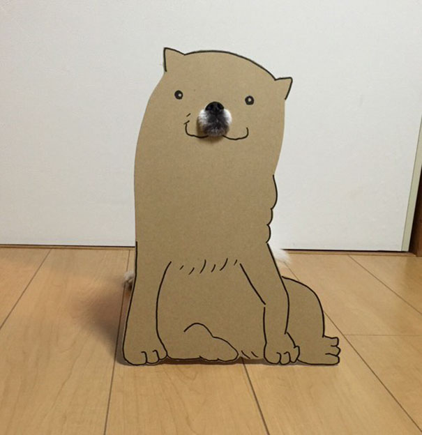 funny-cosplay-dog-costume-cardboard-cutouts-6