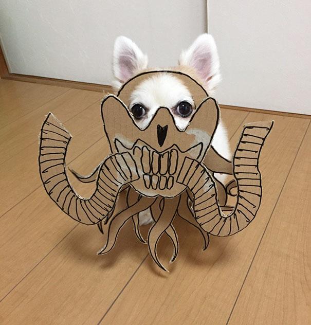 funny-cosplay-dog-costume-cardboard-cutouts-9