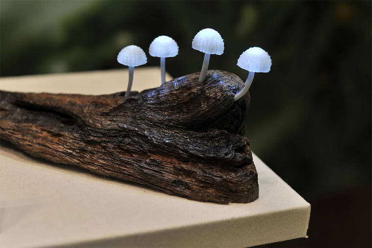 beautiful-mushroom-lamps-home-designs-15