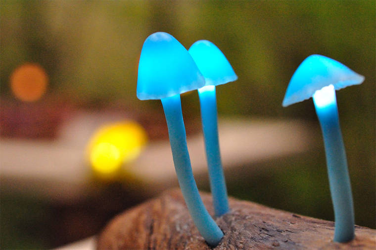 beautiful-mushroom-lamps-home-designs-16