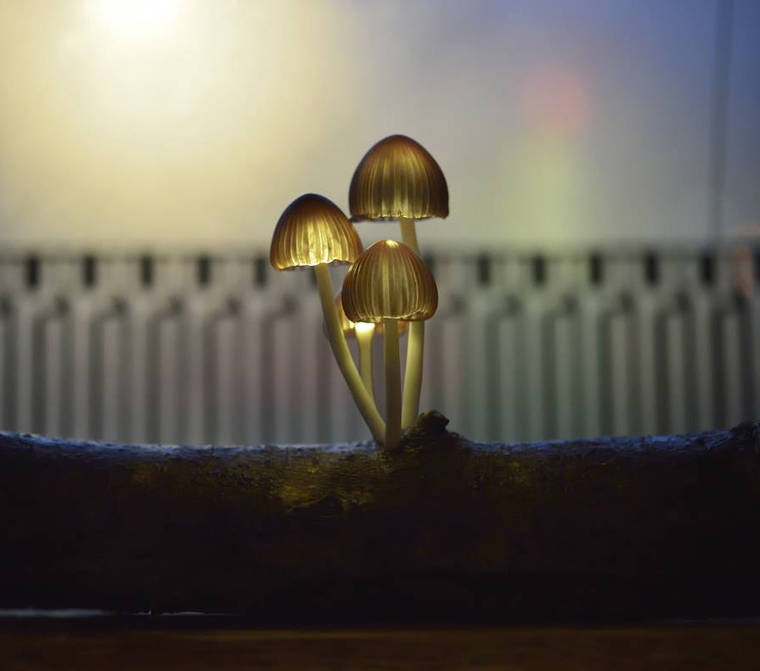 beautiful-mushroom-lamps-home-designs-17