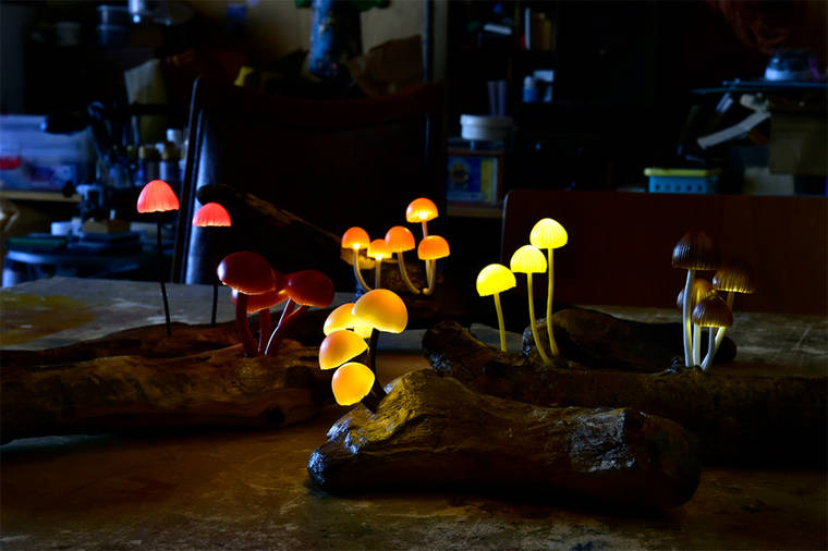 beautiful-mushroom-lamps-home-designs-19