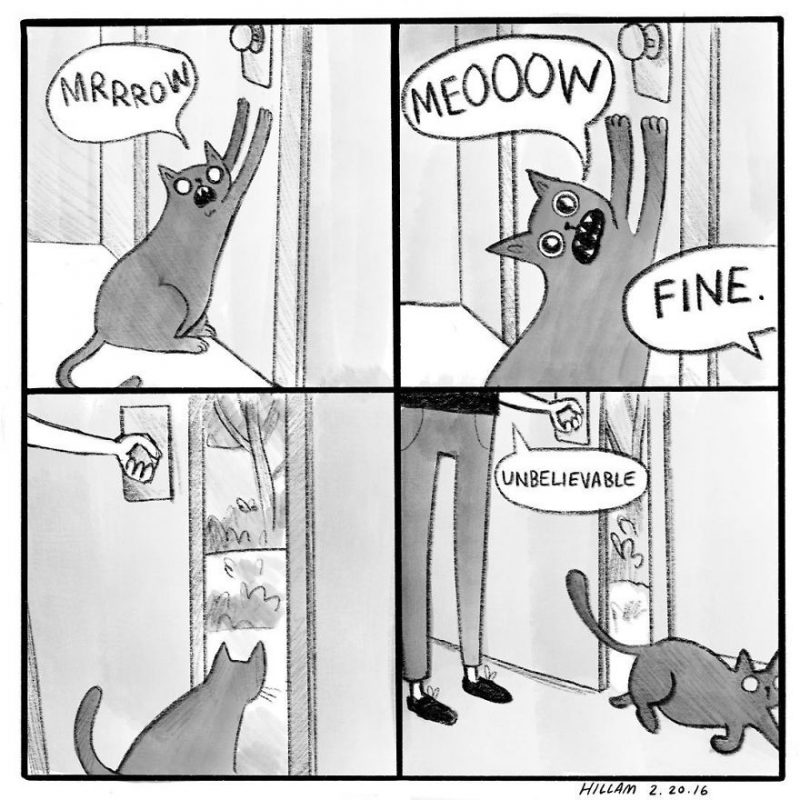funny-cat-comics-illustrations-10