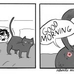 Illustrations show what life really is when people live with a cat