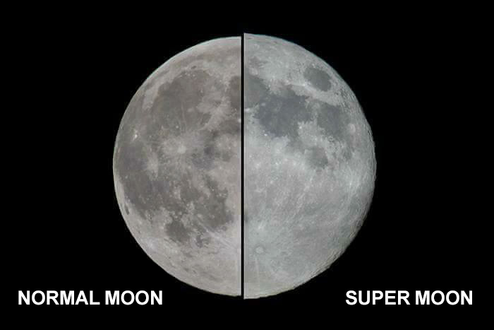hilarious-reactions-supermoon-memes-2