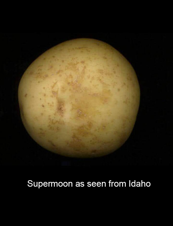 hilarious-reactions-supermoon-memes-6