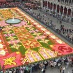 The Flower Carpet Festival 2016 at the Grand Place, Belgium