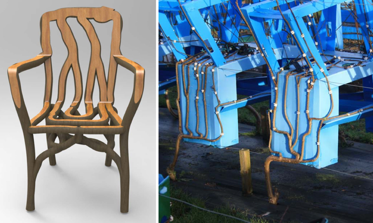 Awesome Derbyshire Based Furniture Designer Grows Chairs And Tables From The Ground