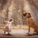 Photography project showing the heartwarming bond between little children and their supersized dogs