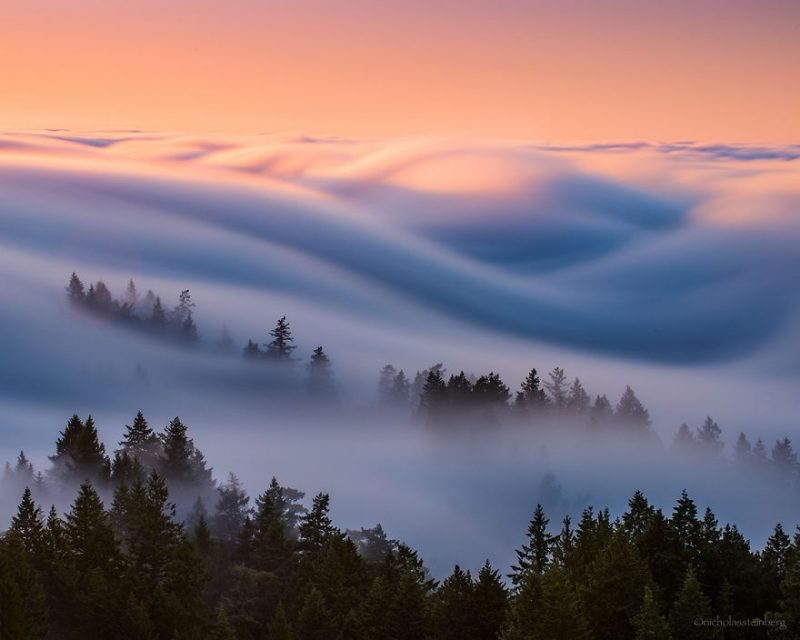 stunning-beautiful-fog-waves-photo-shoot-10