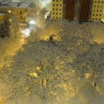 Magical photograph of thousands of crows sitting on snowy treetops captured by a police