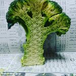 Edible art pieces by Japanese food sculptor