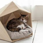 Pet's wood bed designed in pentagonal form