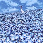 Dreamlike photos of the cherry blossom in Japan