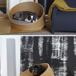 Modern pet bed design