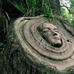 Sculptural portraits emerge from trees